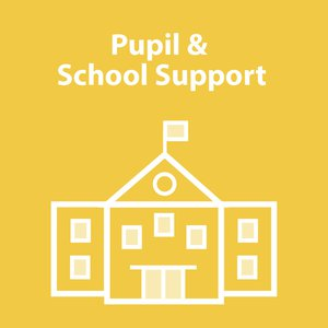 Pupil and School Support logo